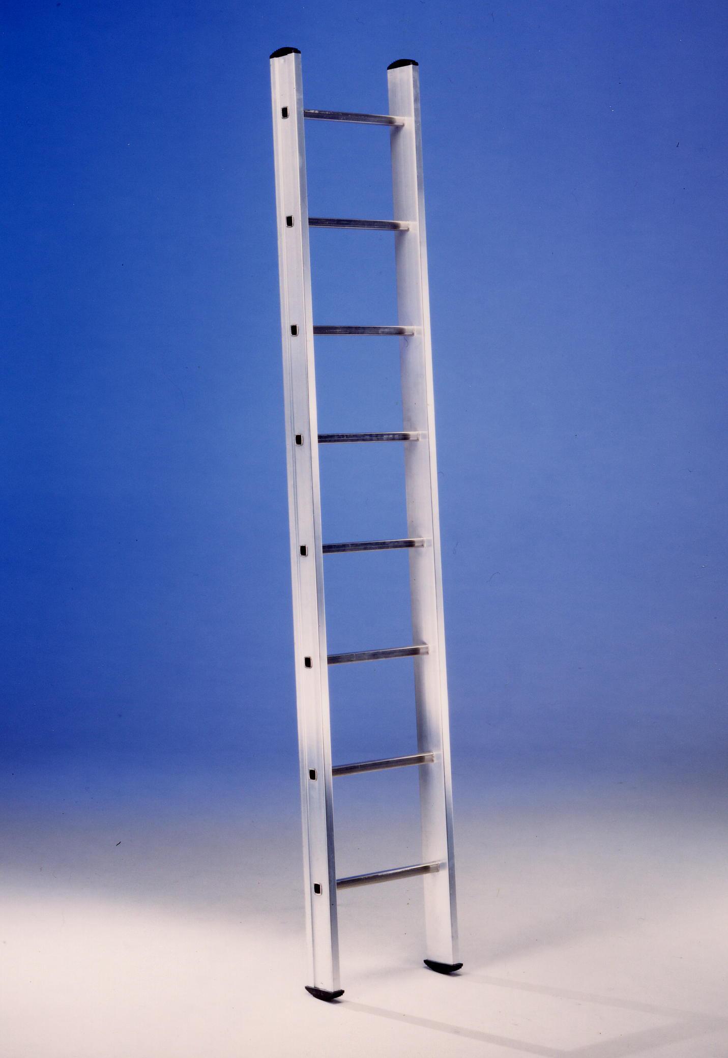 Bianchin scale al1 scala semplice d appoggio a pioli - Scale da appoggio ...